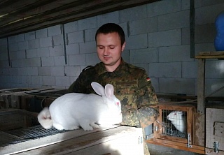 Іmplementation of breeding livestock of rabbits Hyplus